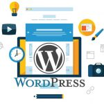 The Secret Guide To Why Only WordPress
